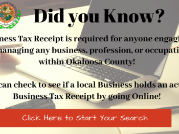 Business Tax Receipt Search