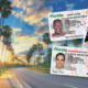 FLORIDA DRIVER'S LICENSE GETS A NEW LOOK